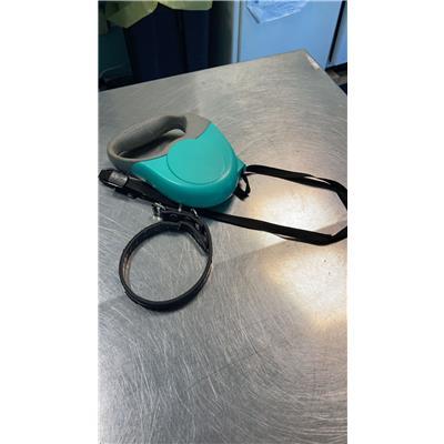 ASL Veterinaria RM D - 380260044552072
