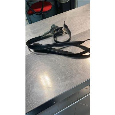 ASL Veterinaria RM D - 380260044476261