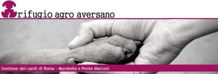 Logo di Rifugio Agro Aversano srl